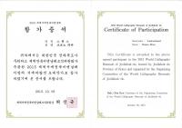 1_bri-BoJ-9-2013-dipl-partecip