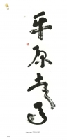 18-Corea-2014-191-poisson-mandarin-Plattner-Felix