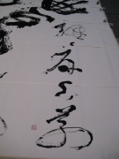 treviso-15-4-2012-00016