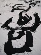 treviso-15-4-2012-00017