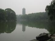 Beida UNI - Parco 6